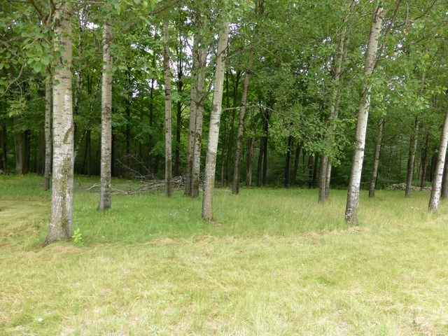 2064 S County Road Jy, Rosholt, WI 54473