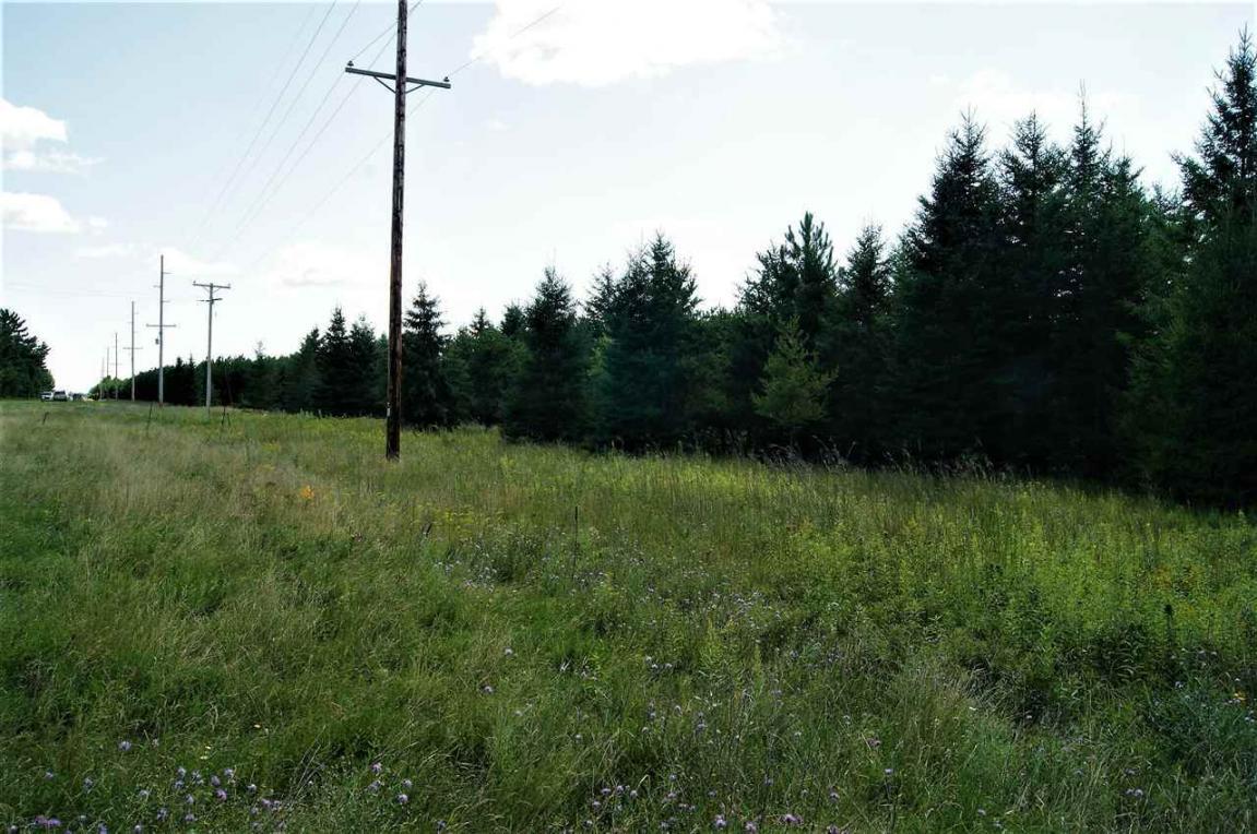20 Acres County Road G, Nekoosa, WI 54457