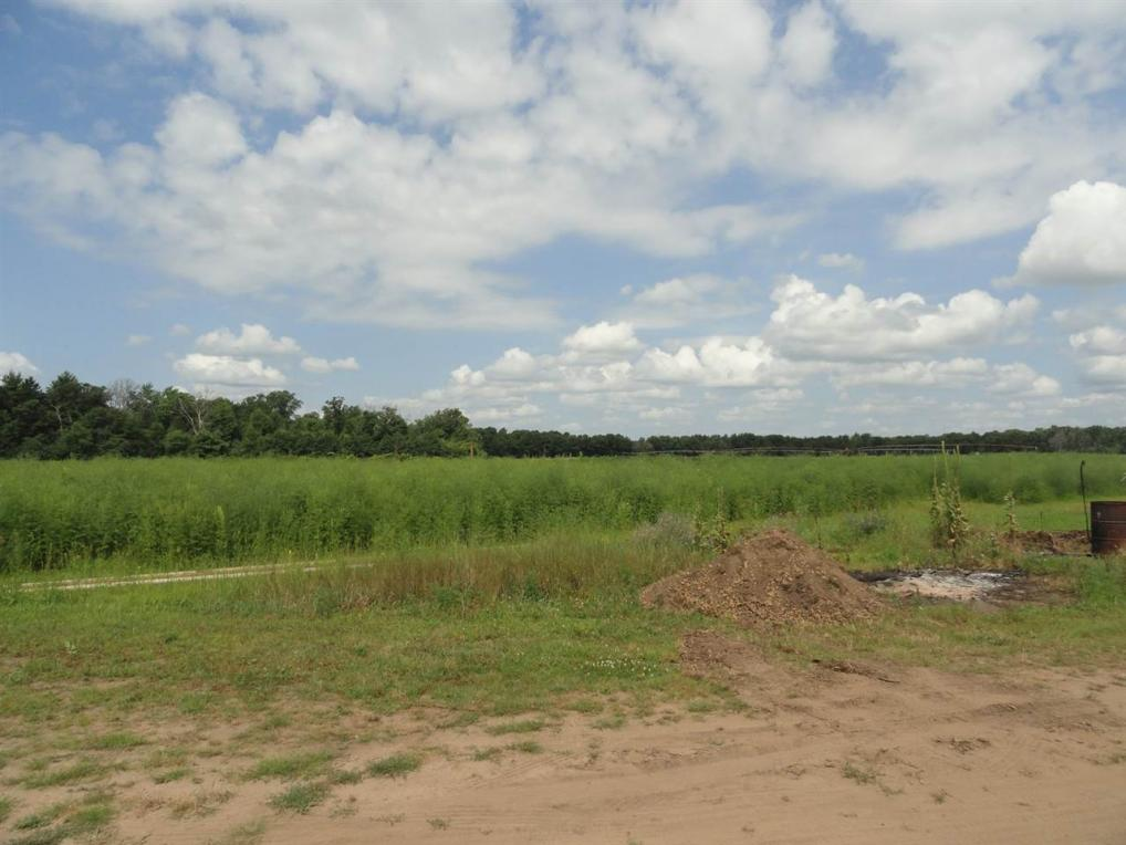 44 acres County Road G, Nekoosa, WI 54457