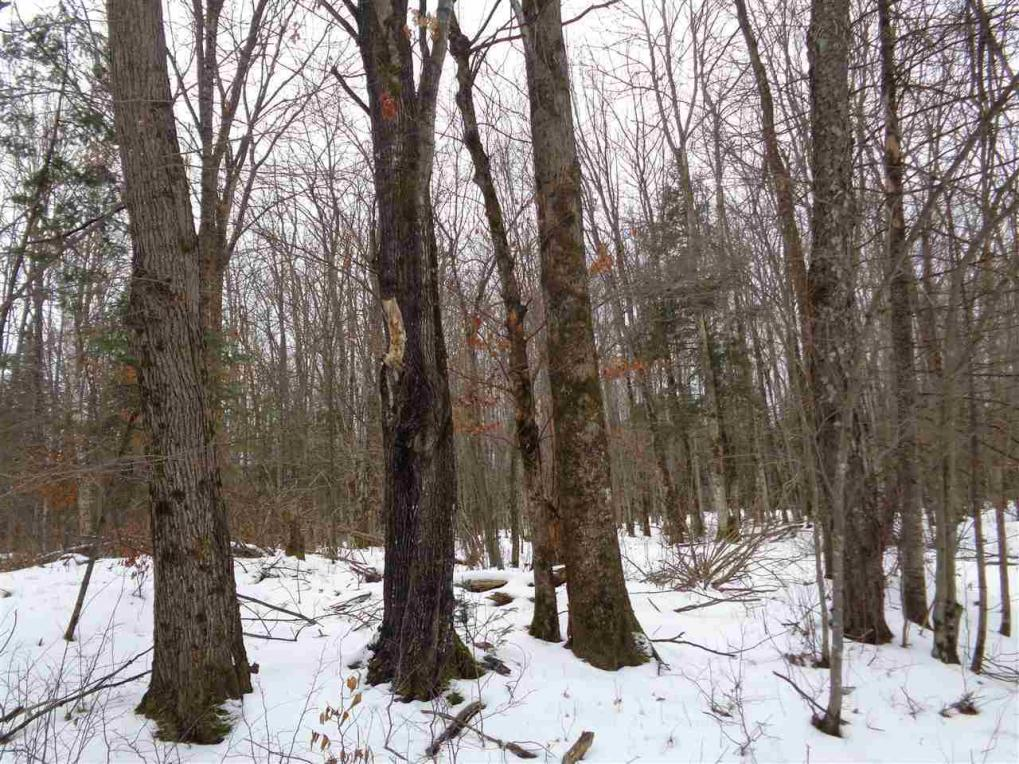 34.4 Acres West Road, Brantwood, WI 54513