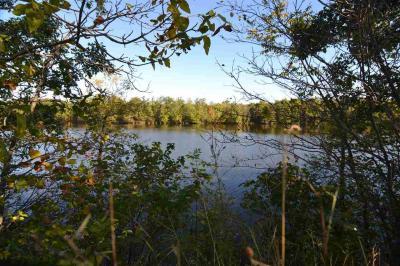Photo of 13 Acres M-O-L Maple Ridge Road, Mosinee, WI 54455