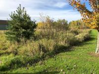 R14396 Mountain Bay Road, Ringle, WI 54471
