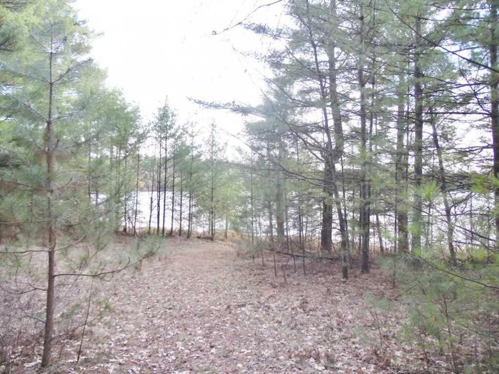 On Myers Road, Tomahawk, WI 54487