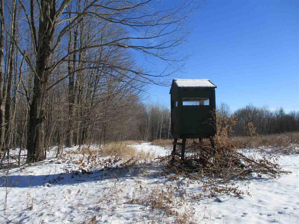 +/-173.14 Acres Wood Creek Avenue, Rib Lake, WI 54470