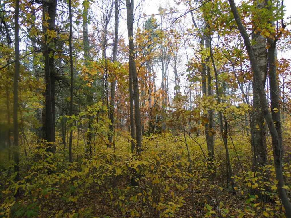 Lot 11 Cottage Road, Tomahawk, WI 54487
