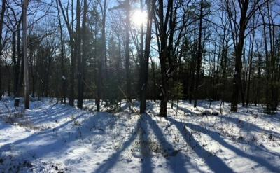 Photo of 1.1 Acres Forest Valley Road, Wausau, WI 54403