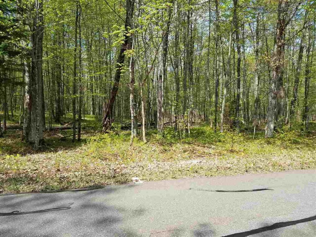 Lot 9 Deer Run Trail, Mountain, WI 54149
