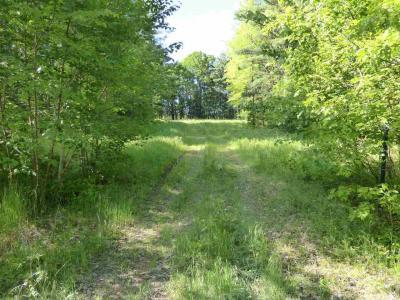 Photo of 8.45 Ac County Road Db, Mosinee, WI 54455