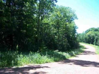 Photo of Lot 5 & 6 Graveen Road, Stratford, WI 54484