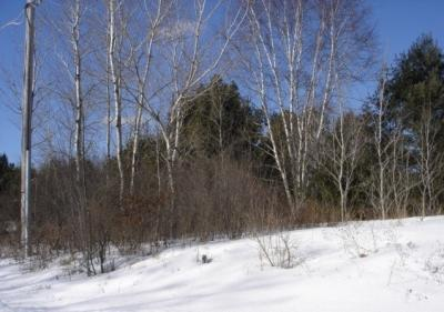 Photo of Lot 4 Doering Drive, Merrill, WI 54452