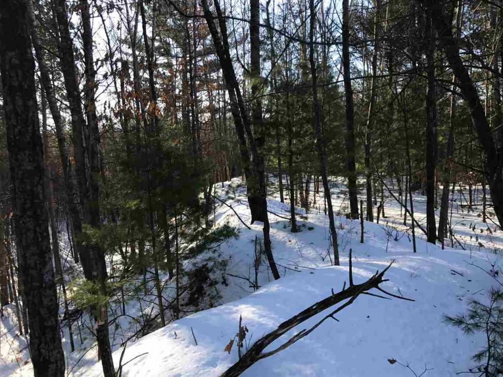 +/-39.99 Acres County Road I, Fairchild, WI 54741