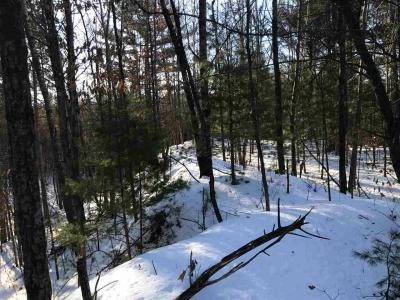 Photo of +/-39.99 Acres County Road I, Fairchild, WI 54741