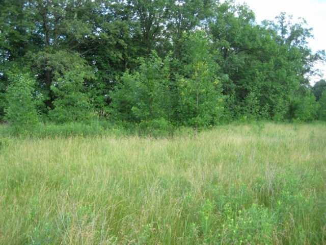 Lot 3 River Road, Junction City, WI 54443