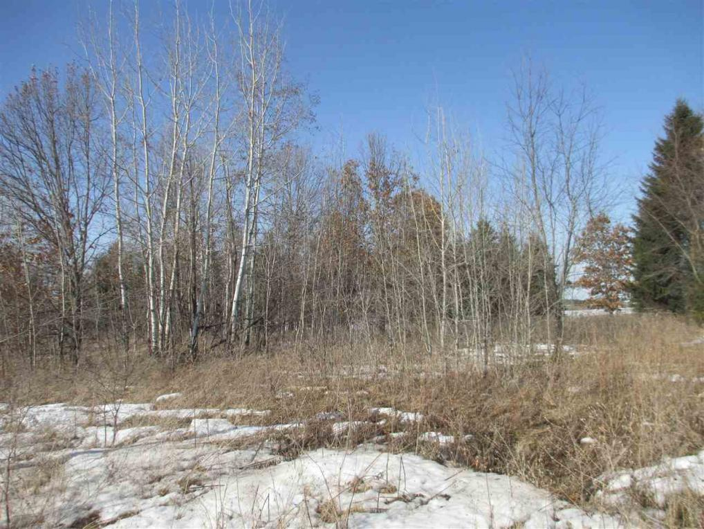 Lot 1st Street, Plover, WI 54467