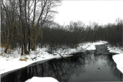Photo of Wood Creek Avenue, Rib Lake, WI 54470