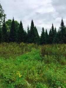 316 Freedom Way Lot 57, Wausau, WI 54403