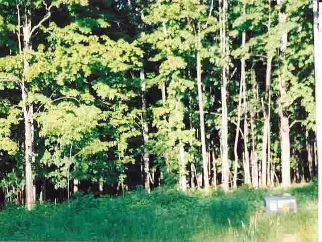 Lot 16 Woodsview Road, Marshfield, WI 54449