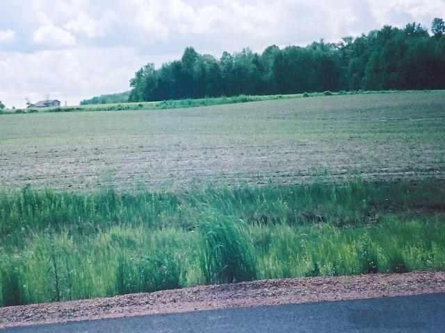 Lot 30 Woodsview Road, Marshfield, WI 54449