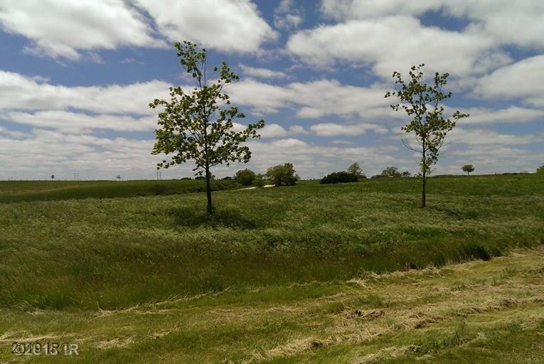 Lot 2 Bluebird Estates, Van Meter, IA 50261