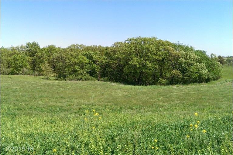 Lot 16 Bluebird Estates, Van Meter, IA 50261