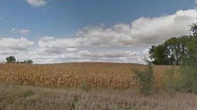 Photo of 250 St. & 44 Highway, Grimes, IA 50111