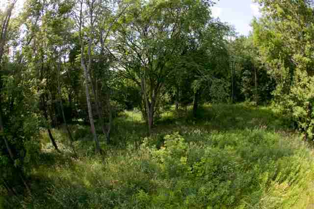 Lot 32 Waterford Est, Dubuque, IA 52001