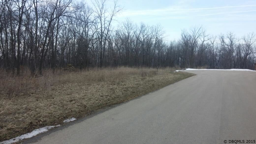 Lot 9 Eleanor Ridge Court, Dubuque, IA 52003