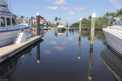 Photo of Boat Dock, Fort Myers, FL 33908