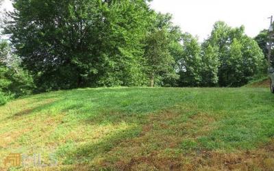 Photo of Patterson Ln, Blue Ridge, GA 30513