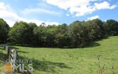 Photo of New Hope Rd, Morganton, GA 30560