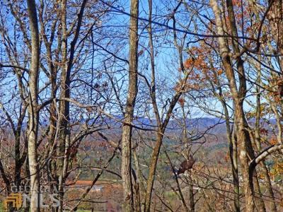 Photo of Highland Forest Dr, Morganton, GA 30560