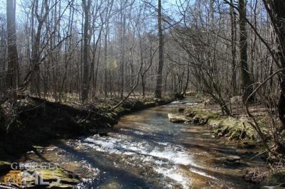 Photo of Hwy 53, Dawsonville, GA 30534