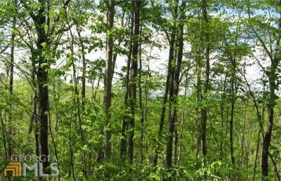 Photo of Green Ridge Rd, Blue Ridge, GA 30513