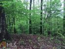 Forest Run, Dahlonega, GA 30533