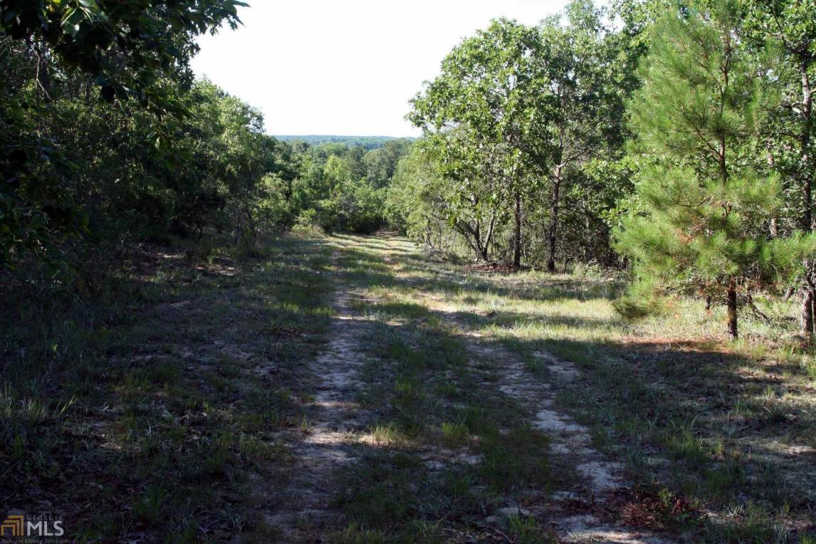 Deer Creek Rd, Ellaville, GA 31806