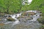 Clay Creek Falls Rd, Dahlonega, GA 30533