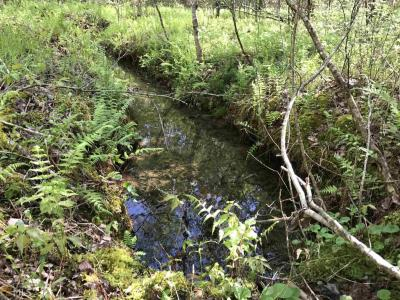 Photo of 104.65 Acres Cutcane Rd, Mineral Bluff, GA 30559