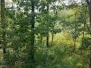 92 Hidden Brook Trl, Newnan, GA 30265