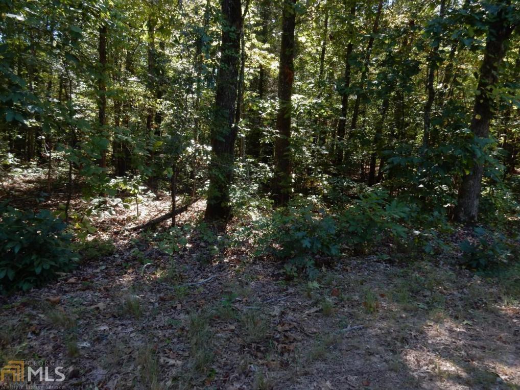 Bruce Rd, Douglasville, GA 30134