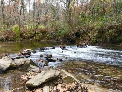Photo of Hwy 2, Blue Ridge, GA 30513