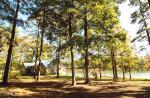 Story Mill Rd, Waynesboro, GA 30830