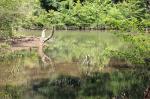River View Rd, Blairsville, GA 30512