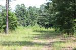 102 SW Highway 102, Mitchell, GA 30820
