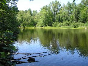 Lot 3 Ryan Rapids Bluff, Rhinelander, WI 54501