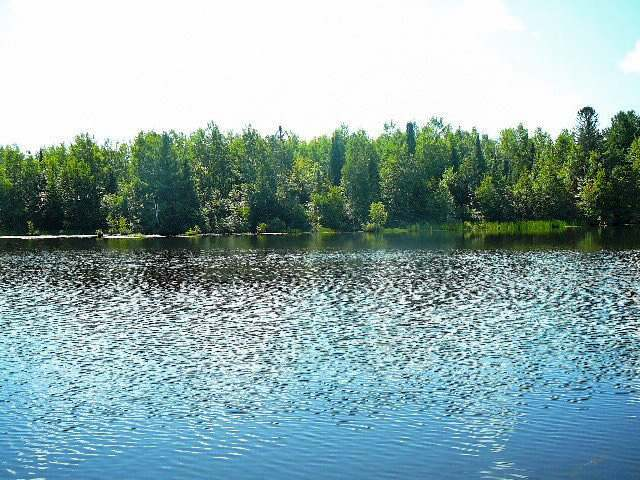 6 River Glen Rd, Park Falls, WI 54552
