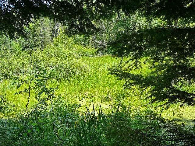 13 River Glen Rd, Park Falls, WI 54552