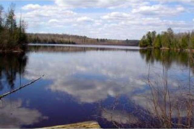 ON Bear Lake Rd #23, Blackwell, WI 54566