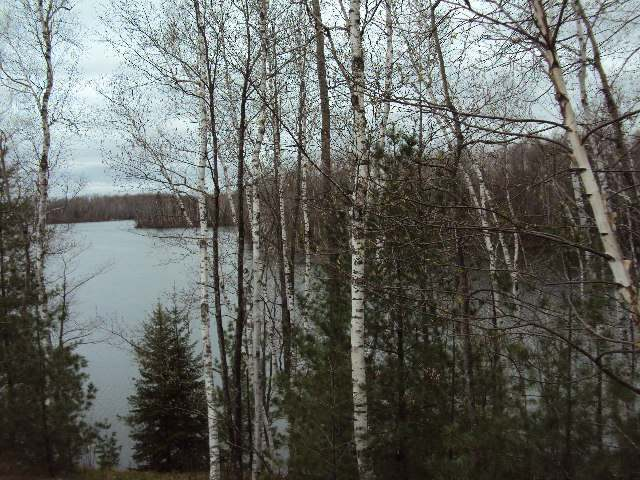 Lot #7 Pannor Ln, Riverview, WI 54149