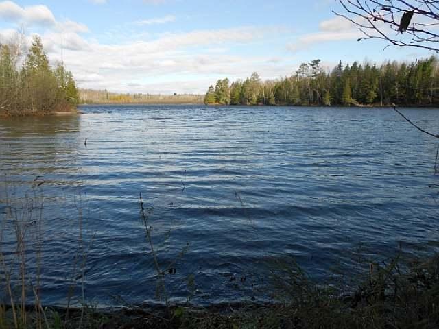 ON Bear Lake Rd #17, Blackwell, WI 54566