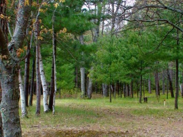 Lot 2 Back Bay Cr, Tomahawk, WI 54487